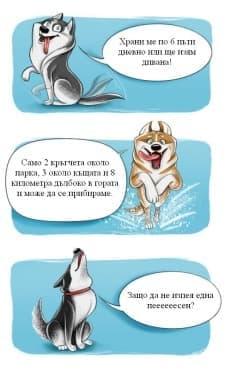 Кратко ръководство, което да ви направи експерт по кучешките породи - изображение