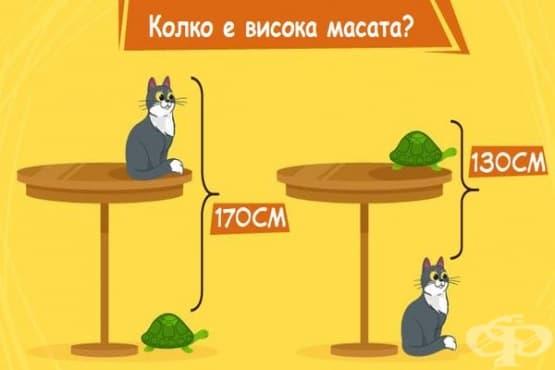 Можете ли да посочите колко е висока масата? - изображение