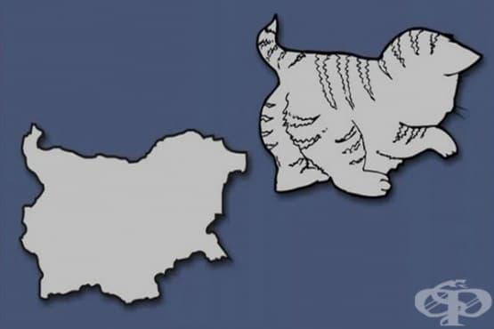 30 европейски държави, трансформирани в различни форми на животни и предмети - изображение