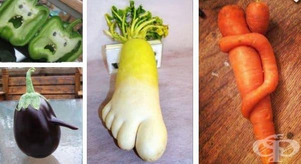 30 плодове и зеленчуци, които приличат на нещо друго - изображение