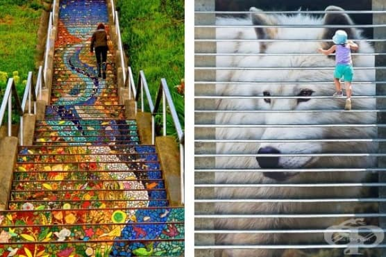 30 снимки на цветни стълби, превърнати в истинско произведение на изкуството - изображение