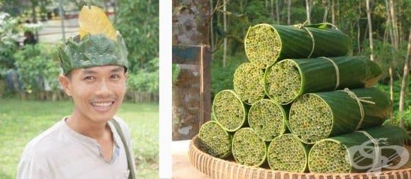 Виетнамец прави биоразградими сламки от дива трева, за да намали използването на пластмаса - изображение