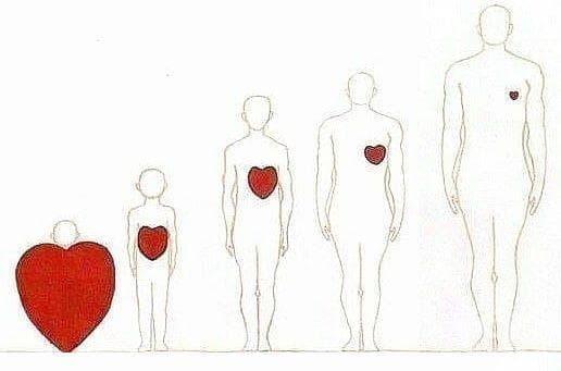 """Доколко сме """"сърце"""" и доколко сме само """"тяло""""? - изображение"""