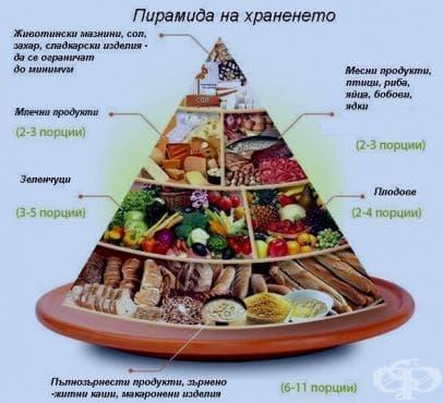 Хранителна пирамида или схематично изображение на принципите на здравословното хранене - изображение