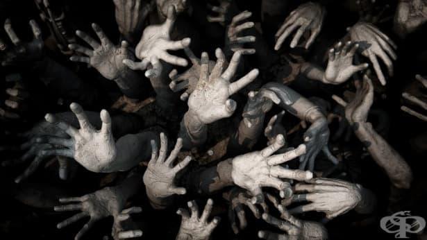 10-те най-зловещи заболявания на планетата – част 1 - изображение