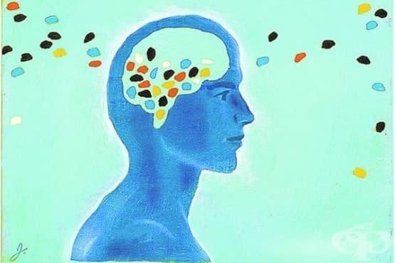 Изучаване на шизофренията от 50-те години на 20-ти век - изображение