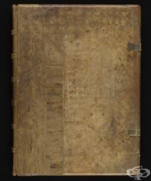 """""""Wound Man"""": емблематичният хирургически труд от 15 век, 2 част - изображение"""