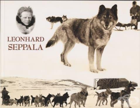 Кучешките впрягове, предотвратили епидемия от дифтерия в Аляска през 1925 година - изображение
