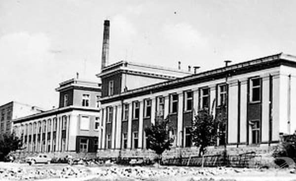 Развитие и съдба на Пеницилиновия завод в Разград в края на 20 и началото на 21 век - изображение