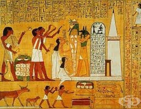 Староегипетска фармакопея и представа на древния народ за здраве и болест - изображение