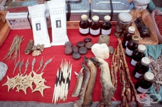 Традиционни народни лекарства с животински произход без особена терапевтична стойност, част 2  - изображение
