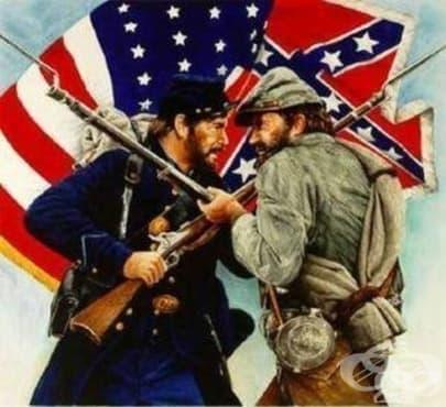 Билки, използвани по време на Гражданската война в САЩ, 2 част - изображение