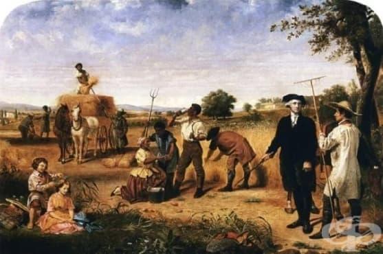Откъде идва митът, че Джордж Вашингтон е пушил марихуана - изображение