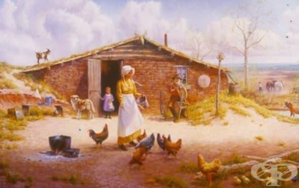 Землянката - популярно жилище в САЩ допреди 100 години - изображение