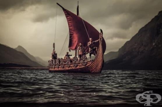 Хигиената на викингите по време на Тъмните векове - митове и реалност - изображение
