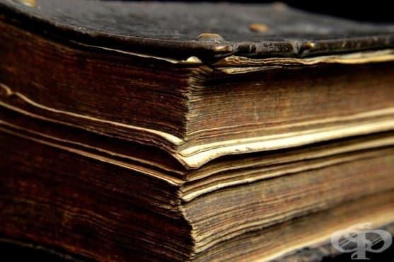 Челюст от щука и драконова кръв - част от английските рецепти за здраве от 18-ти век. - изображение