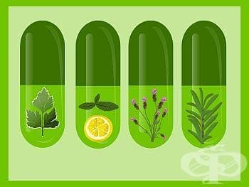 Начини за прилагане на билките в китайската традиционна медицина - изображение