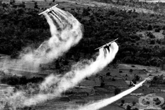 Агентът ориндж, белязал живота на хиляди виетнамци и ветерани от Виетнамската война - изображение