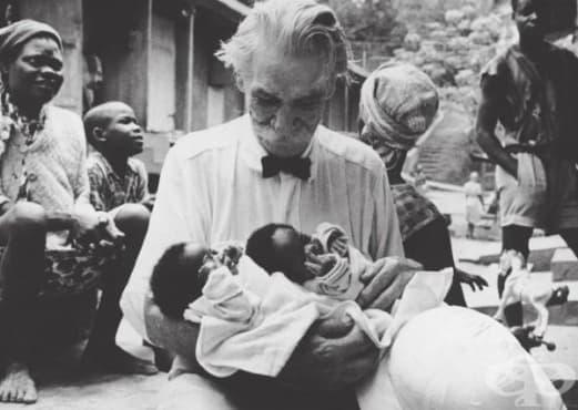 Алберт Швайцер: лекарят, получил Нобелова награда за мир през 1952 година  - изображение