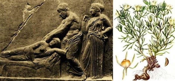 Александър от Тралес и лечението на епилепсията чрез народни лекове (Physiкa) - изображение