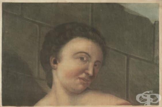 Анатомичният ангел на Жак Готие-Д'Агот – новаторска илюстрация, съчетаваща печатарското изкуство на 18 век и историята на медицинските изследвания - изображение