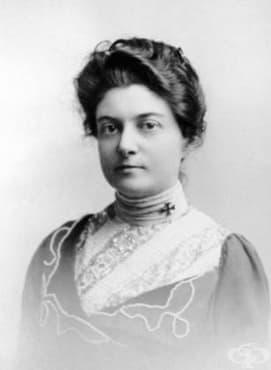 Доктор Анита Макгий и медицинската й кариера в САЩ от края на ХIX и началото на XX век - изображение