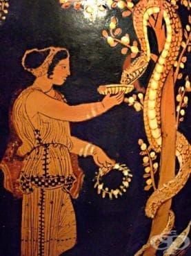 Археологически находки, свидетелстващи за развитието на древнотракийското лечебно изкуство до четвърти век - изображение