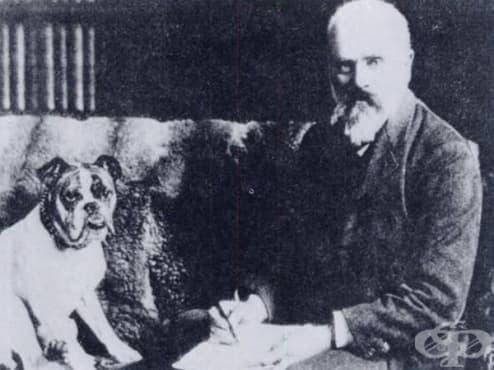 Аугустус Уолър: медикът, направил първата електрокардиограма  - изображение