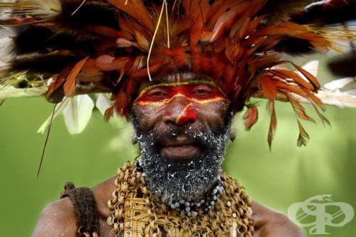 Австралийски аборигени и папуаси като част от човешката еволюция - изображение