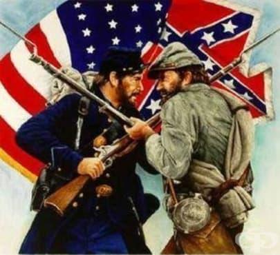 Билки, използвани по време на Гражданската война в САЩ, част 1 - изображение