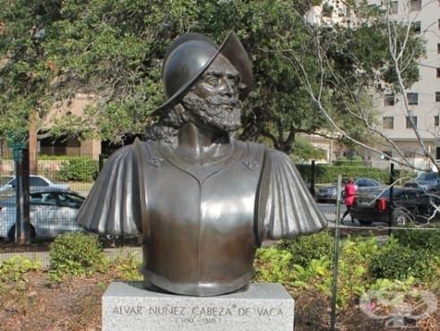 Алвар Нунес Кабеса де Вака - първият лечител и антрополог в Новия свят - изображение