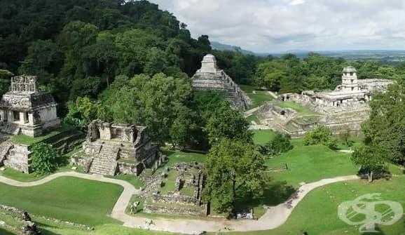 Нова теория обяснява какво е унищожило цивилизацията на маите - изображение