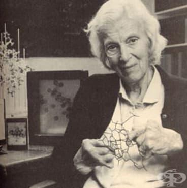 Дороти Ходжкин – химикът, разгадал молекулярната структура на витамин B12 - изображение