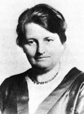 Доктор Вивиа Бел Епълтън й педиатричната й кариера в САЩ от края на 20 век - изображение
