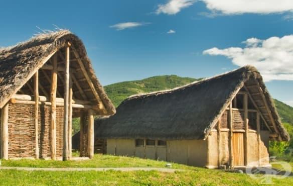 Защо преди 8 000 години хората в България са яли кости и дали това е вид канибализъм - изображение