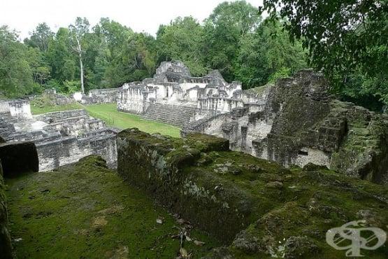 Древните маи са пречиствали вода с филтри с кварц и зеолит - изображение
