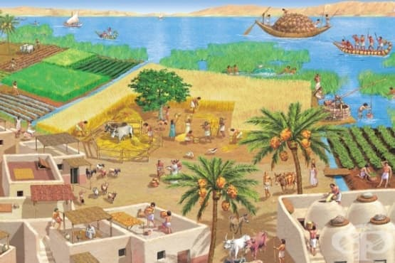 """Медицинската причина за """"мъжката менструация"""" в Древен Египет - изображение"""