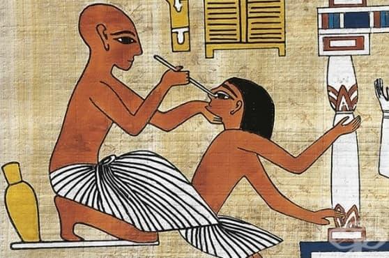 Кръв от прилеп и свински очи: древноегипетски лекове за слепота - изображение
