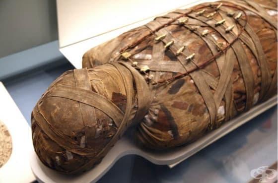 Най-древните случаи на рак са регистрирани при египетски мумии на 4 000 години - изображение