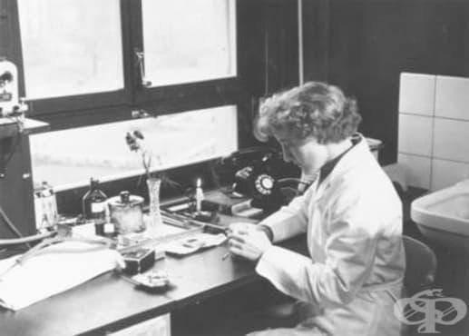 Елизабет Кюблер Рос и ролята й за развитието на психиатрията  - изображение