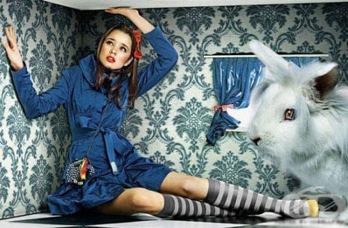 Естество на синдрома на Алиса в страната на чудесата - изображение