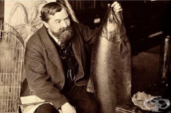 Уилям Бъкланд, който се опитва да изяде по едно животно от всеки познат вид - изображение