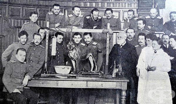 Фактори, възпрепятстващи работата на Иван Павлов през 1882 година - изображение