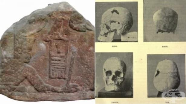 Египетски фараон, живял преди 4 500 години, е първият известен случай на гигантизъм - изображение