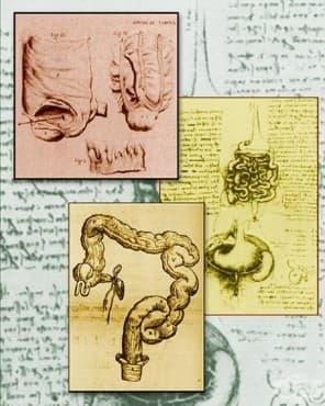 Зараждане на гастроентерологията като медицинска дисциплина в Европа и САЩ през XIX в. - изображение