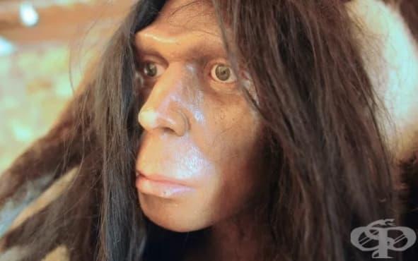 """Загадката около Зана - """"жената-примат"""", живяла в Русия през 19-ти век - изображение"""