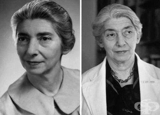 Грете Бибринг и ролята й за развитието на психиатрията отвъд Океана - изображение