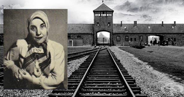Гизела Пeрл – ангел-спасител с кървави ръце от Аушвиц - изображение