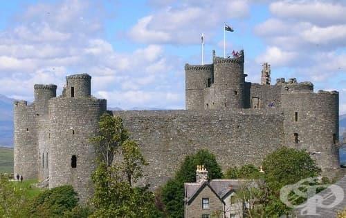 Неприятната истина за живота в Средновековен замък - изображение
