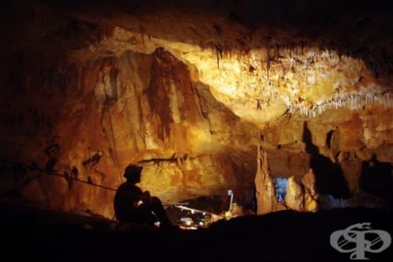 Кухня от времето на Каменната епоха е намерена на дъното на езеро - изображение